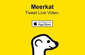 meerkat-twitter